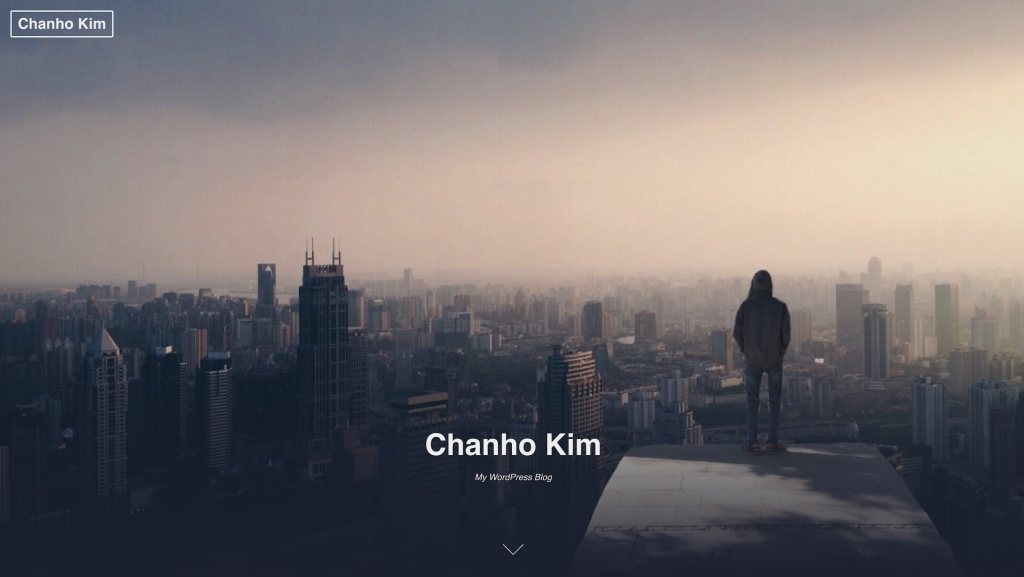 Chanho Kim Website